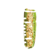 Corn in test tube