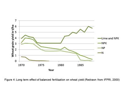 Long term effect of balanced fertilization on wheat yield [graph]