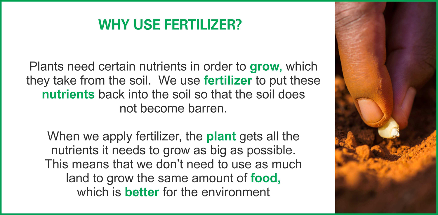 Why use fertilizer? [chart]